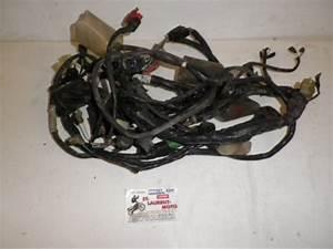 Pieces Moto Honda : faisceau electrique 125 varadero honda pi ce moto occasion p42104 ~ Medecine-chirurgie-esthetiques.com Avis de Voitures