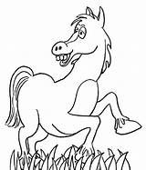 Coloring Horse sketch template