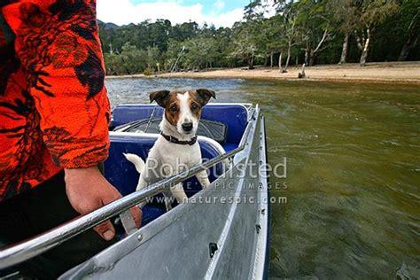 Jet Boat Lake Hauroko by Fox Terrier In Jet Boat On Fishing