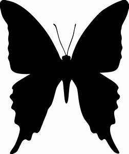 Butterfly stencil   stencils   Pinterest   Stencils ...