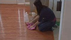 pet stain removers on pinterest stain removers urine
