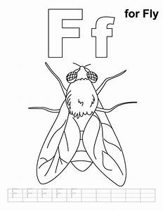 Free coloring pages of flies