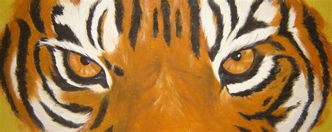 tiger eyes cliparts   clip art