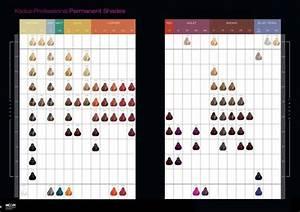 Kadus Professional Permanent Shades June 2014 Color