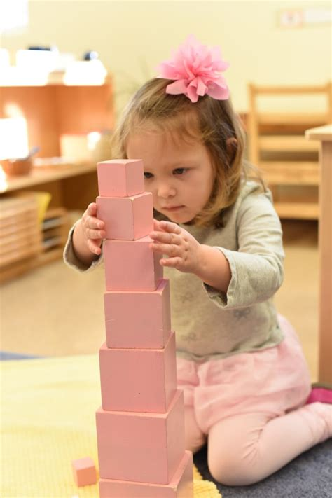 The Westmont Montessori School: Our hands feed the mind: a ...