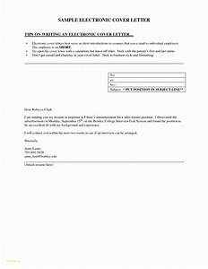 resume format for software tester the cover letter has to be clearly arranged and simple to