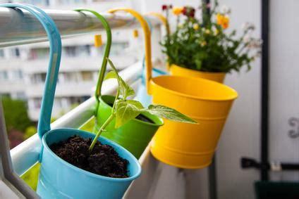 pots de fleurs sur balcons r 232 gles lois et conseils
