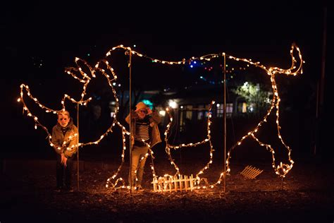 oakland zoo lights how often do you add new traditions design
