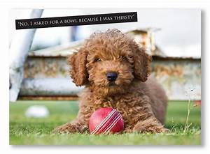 Cricket Greeting Card. Cute puppy with ball and funny ...