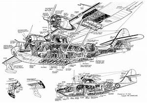 Catalina Structurual  U0026 39 Cutaway U0026 39  Drawing