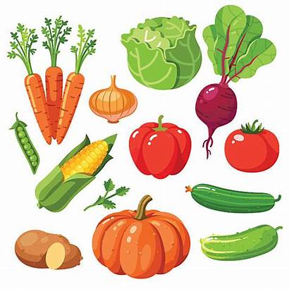 Fresh Vegetables Cucumber Clip Illustrations Healthy Vegetable