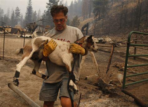 flames anguish strike chelan  spreading wildfires burn