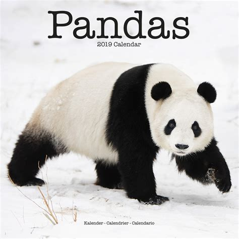 pandas calendars ukpostersabposterscom