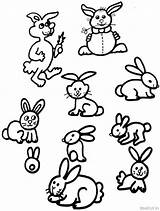 Coloring Bunny Rabbits Rabbit Pages Widgets sketch template