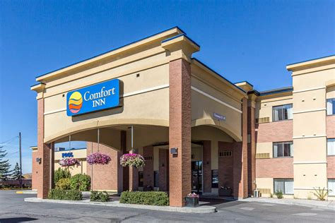 comfort inn to me comfort inn coupons butte mt me 8coupons