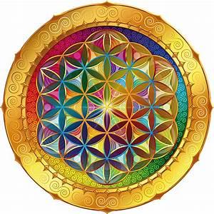 Blume Des Lebens Fensterbild : blume des lebens fensterbild 11cm englisch yoga heilige geometrie meditation ~ Indierocktalk.com Haus und Dekorationen