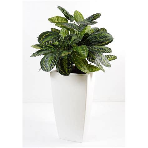 calathea en pot haut composition artificielle fleurs plantes artificielles