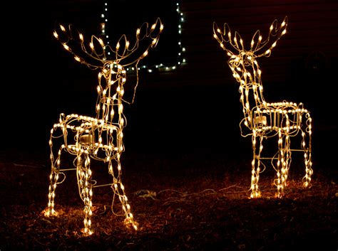 christmas light reindeer christmas decorating