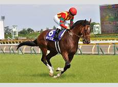 Maurice horse Wikipedia
