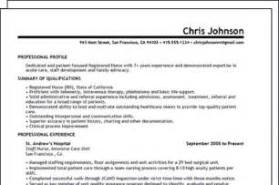 Professional Resumes Writers by Professional Resume Writers Best Template Collection