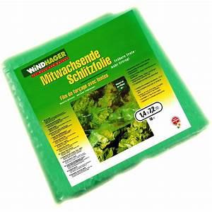 Pflanzen Für Gewächshaus : gew chshaus fr hbeet treibhaus fr hbeetfolie gitterfolie ~ Michelbontemps.com Haus und Dekorationen