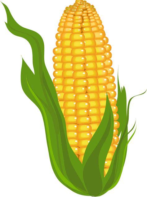 Corn Clip Art Free