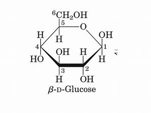 stereochemistry - Why is H bonded to C5 drawn below the ...