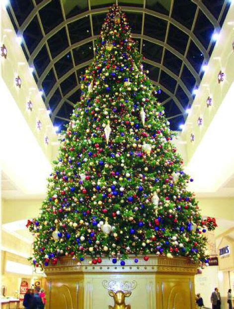 commercial christmas trees and commercial christmas