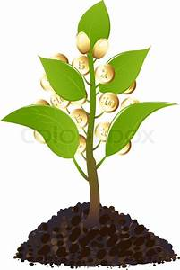 Young Plant With Golden Coins  Isolated On White