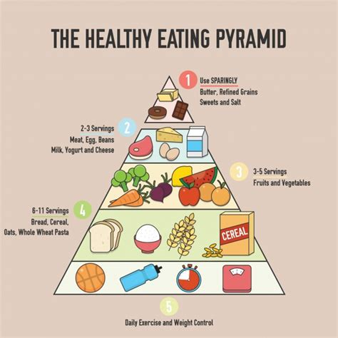 healthy eating pyramid background vector