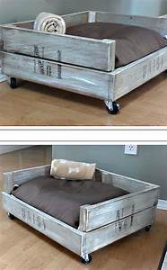 Outstanding best 25 raised dog beds ideas on pinterest for Amazing dog beds
