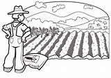Coloring Farmer Farm Pages Planting Printable Scribblefun Rows Corn Crop sketch template