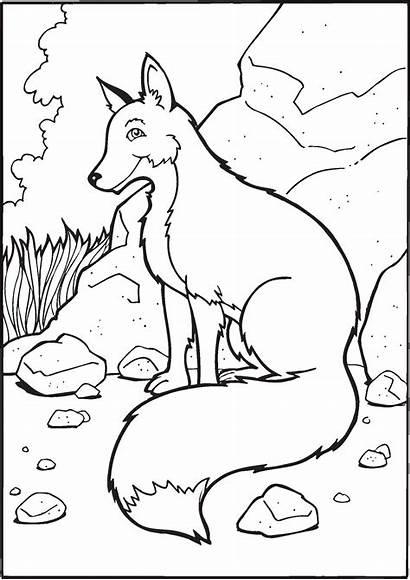 Fox Coloring Printable