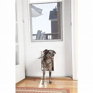 25 best ideas about medium size dogs on pinterest for Dog door size by breed