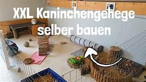 Sieh An Einfach Günstig : kaninchengehege selber bauen g nstig einfach youtube ~ A.2002-acura-tl-radio.info Haus und Dekorationen