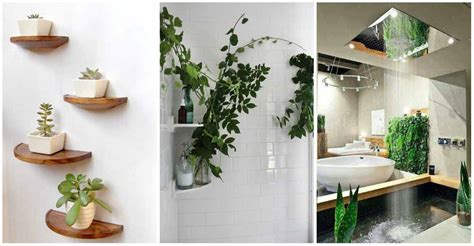artificial plants to redecorate your home livinghours