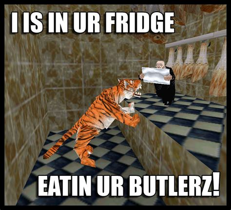 What Is A Internet Meme - stupid internet meme by zcochrane on deviantart