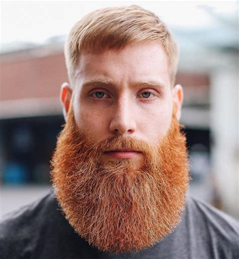 londonschoolofbarbering full thick fluffy red beard