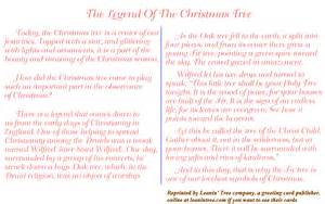 some other notes on christmas 1 legend of why xmas tree 1b the real quot st