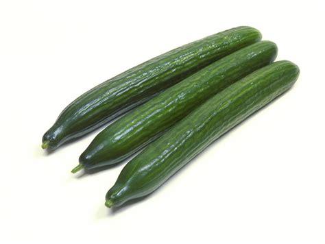 Cucumber Seeds by Cucumber Bologna Cucumber Seeds