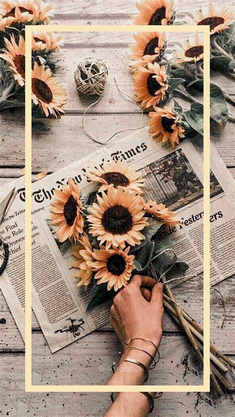 wallpapers aesthetic iphone wallpaper sunflower