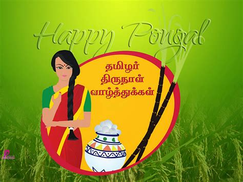 poetry pongal wishes card wallpapers