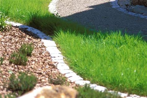 rostflecken auf stein entfernen rasenbegrenzung mit steinen 3
