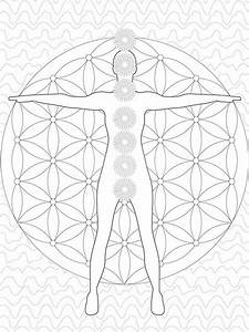 High Quality Celtic Mandala Coloring Pages Coloring Pages 3f Fun Time