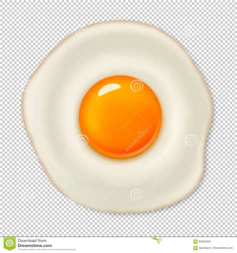 egg template illustration realistic vector fried egg icon isolated on transparent