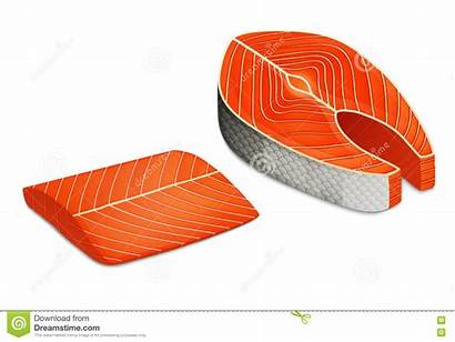 Fillet Fish Piece Salmon Clipart Steak Illustration