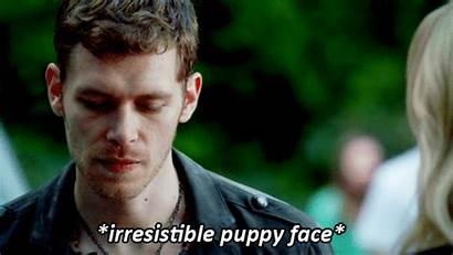 Klaus Gifs Reaction Face Puppy 4x07 Mikaelson