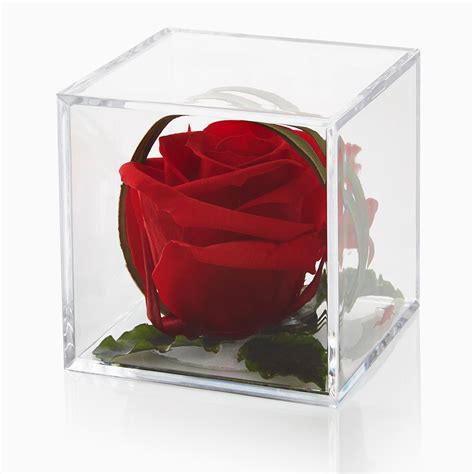timeless red rose cube gift white gift box petals roses