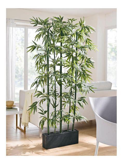 pflanzen als raumteiler bambus raumteiler dekoration raumteiler pflanzen wohnzimmer pflanzen und einrichten und