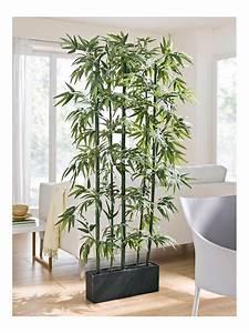 Pflanzen Als Raumteiler : bambus raumteiler dekoration raumteiler pflanzen wohnzimmer pflanzen und einrichten und ~ Yasmunasinghe.com Haus und Dekorationen